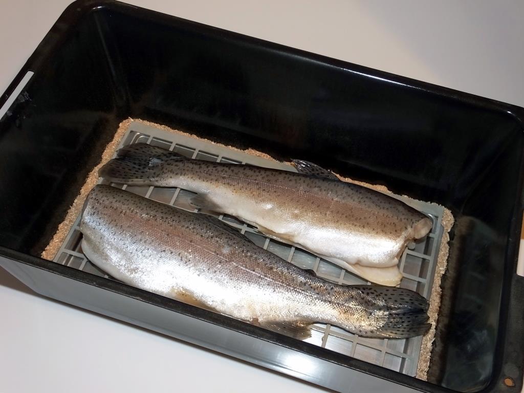 Fische räuchern mit dem Tischräucherofen - Fischerjugend